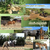 Paseos a caballo. Irconniños.com